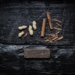 SENS-cricket-PROTEIN_bar-peanut_butter-cinnamon(3flavours)